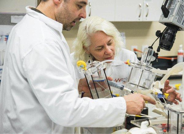 pulse_duplicator_lab_technicians