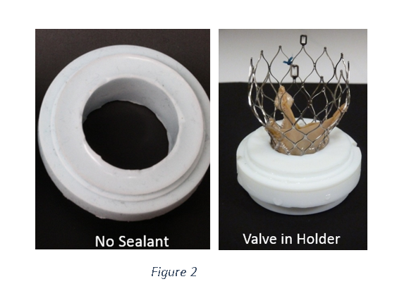 test valve in a silicone holder without paravalvular sealing