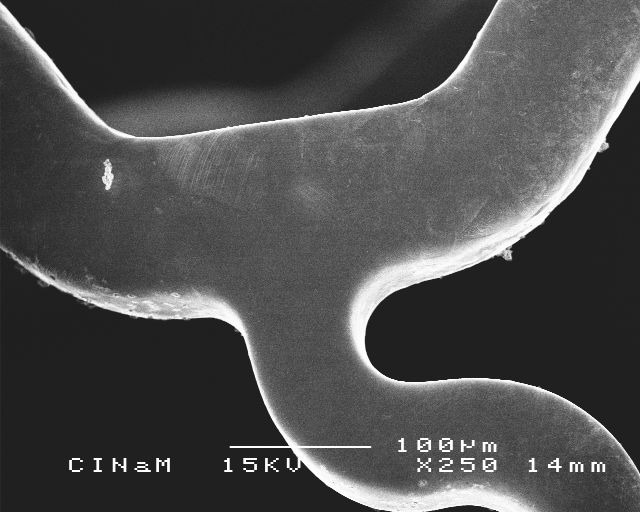 Stent SEM Inspection after Accelerated Fatigue 400 M cycles
